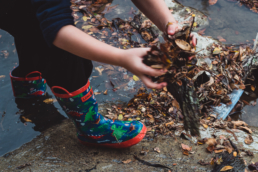 young boy picks up leaves and sticks